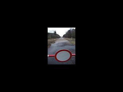 «Горячая линия» в Алтайской таможне