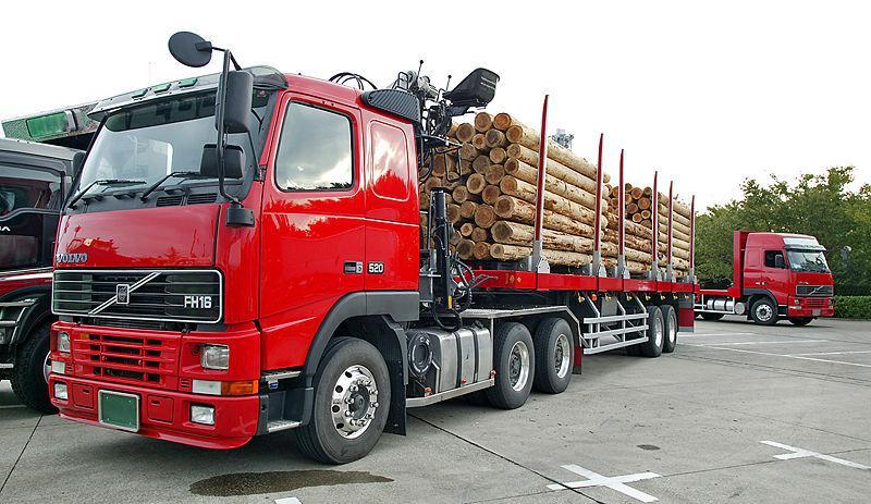 Zbyt ciężkie drewno