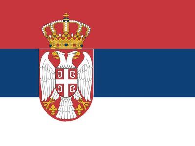 Mažėja TIR sistemos trikdžių Serbijoje