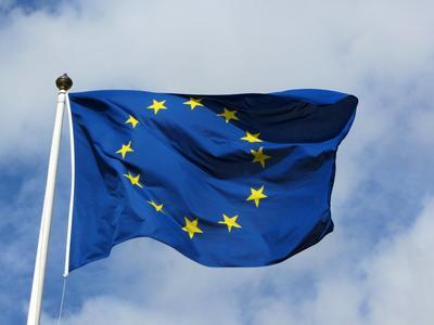 Vokietijos ekonomistas: nelaukite Rusijos, koncentruokitės į ES rinkas