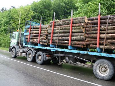 Литва будет проверять белорусскую, украинскую и российскую древесину на радиацию