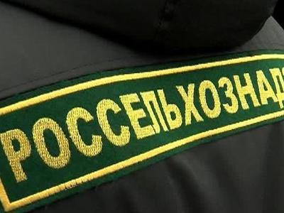 Россельхознадзор вернул белорусским молочным предприятиям право на экспорт в Россию