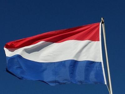 41 штрафов за использование телефона – на A67 в Нидерландах снова останавливали грузовики