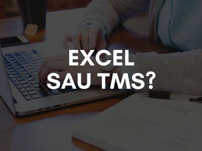 Excel sau TMS?