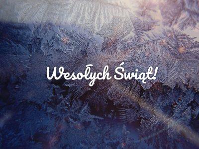 Bożonarodzeniowe życzenia od Trans.INFO!