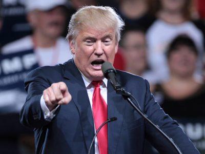 JAV prekių importas į ES – kodėl Donaldas Trumpas nepatenkintas Europos muitais?