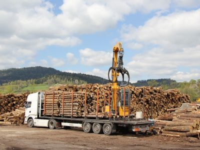 Temporary suspension of the regulations governing cabotage. Germans need help from abroad to remove timber after windstorms