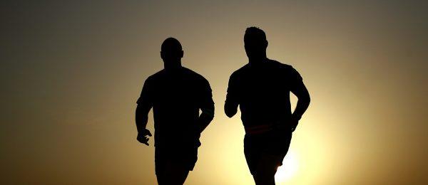 Kuris iš dvynių yra sveikesnis – vairuotojas ar Geležinis žmogus? Atsakymas nėra toks paprastas