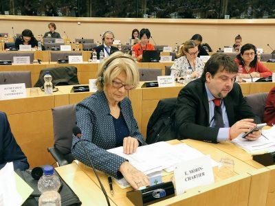Draudimo įmokos važiuos su vairuotoju? Prasidėjo prieštaringas Prancūzijos EP nario pasiūlymas