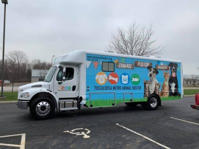 Truck transformed into a mobile adoption centre helps animals find home