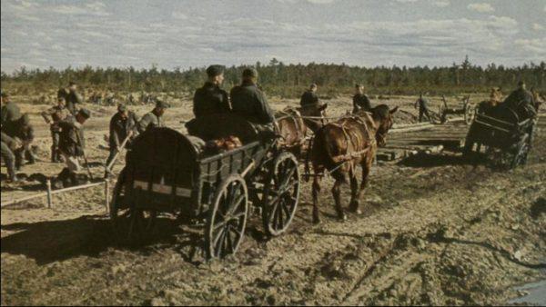 Historia transportu – odc. 52. Niemcom doskwierał brak ciężarówek. Dlatego na froncie wschodnim rekw