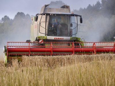 Geros naujienos birių medžiagų vežėjams – auga lietuviškų grūdų eksportas
