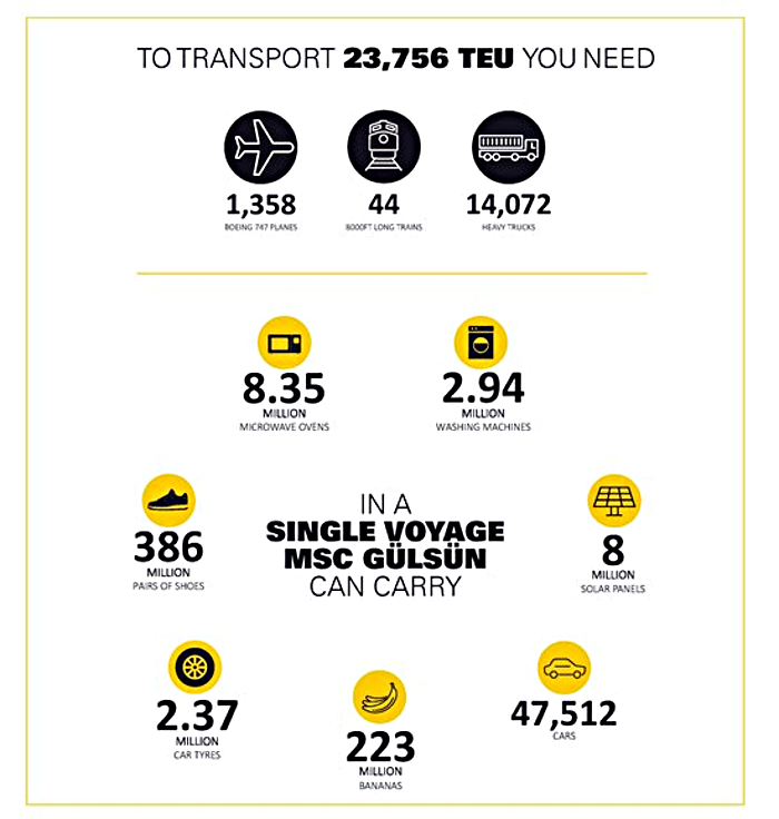 Infografika: MSC