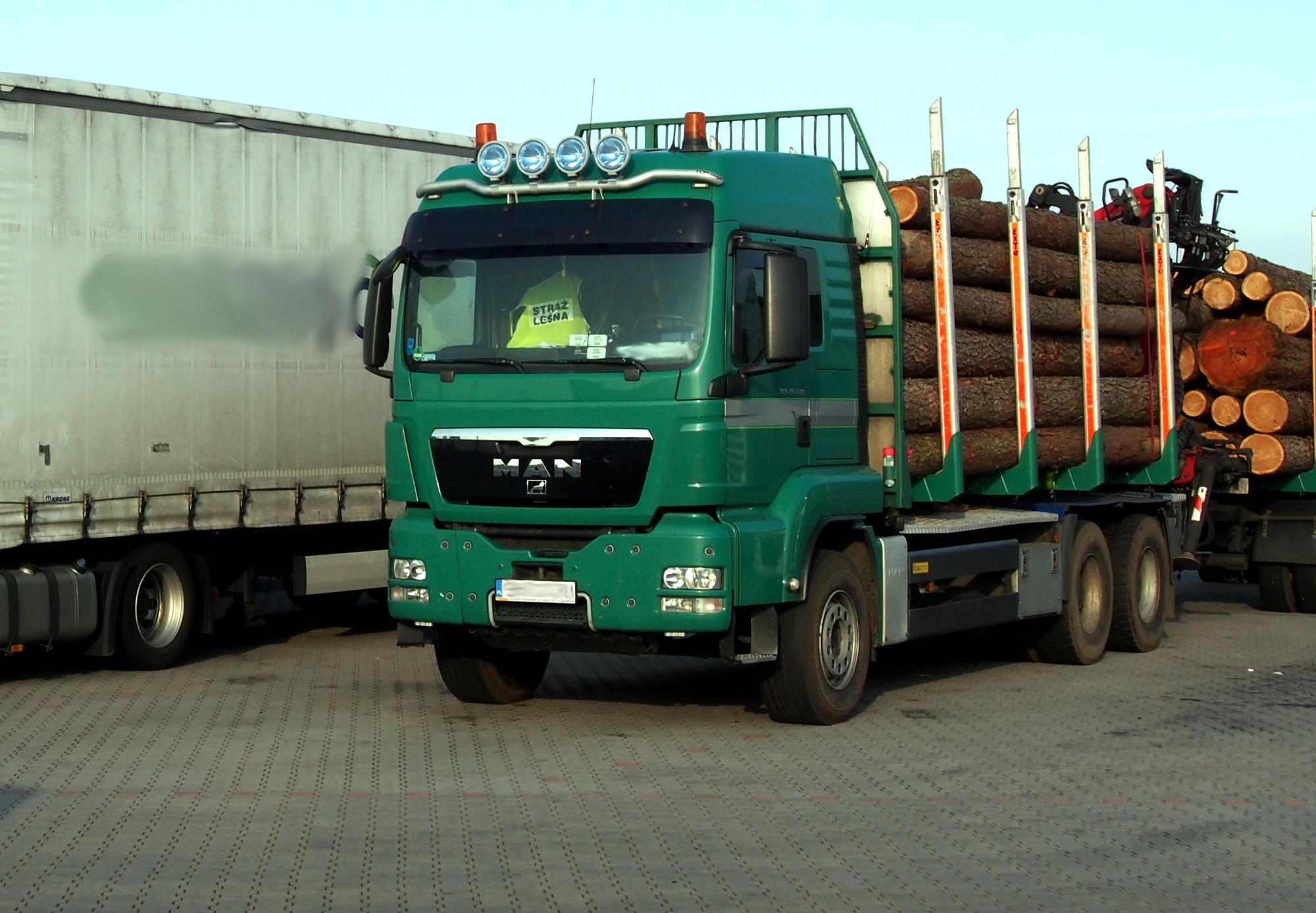Transport drewna, czyli jak układać i czym zabezpieczać kłonice