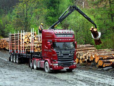 Transport i logistyka drewna. Zobacz, czym najlepiej wozić grubiznę i drobnicę