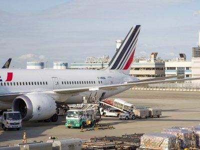 Werden Passagierflugzeuge für den Transport von Luftfracht genutzt? Fluglinien suchen nach Lösungen