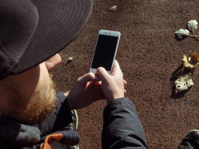 A járművezetők a fákra akasztottak telefonokat, hogy több megbízásuk legyen az Amazontól