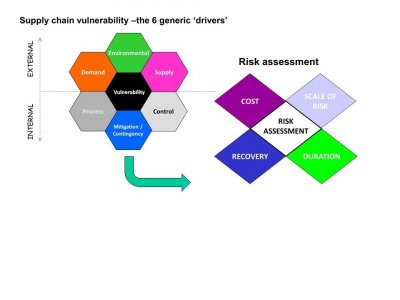 Supply Chain Risk Management theory and COVID19 – what went wrong?