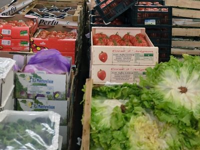 RHA Chief Executive: supply of fresh food to UK will be a challenge