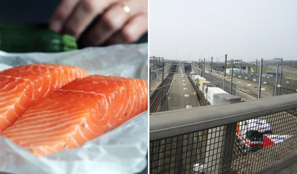 Scottish salmon farmers appeal for priority on Channel crossings