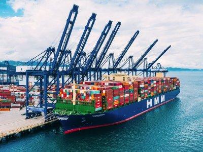 Руководство порта в Роттердаме предупреждает, что после брексита грузовики без соответствующих документов будут отправлены обратно