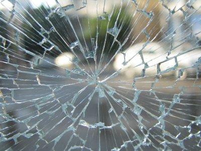 Ungewöhnlicher Unfall: Fliegender Schwan prallt gegen Lkw-Windschutzscheibe