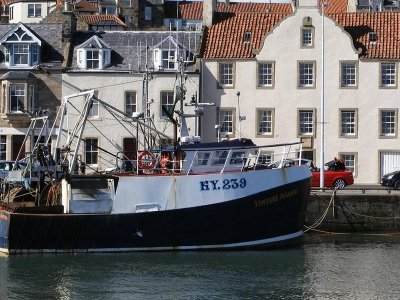 Brexit customs nightmare continues to cost British seafood exporters dear