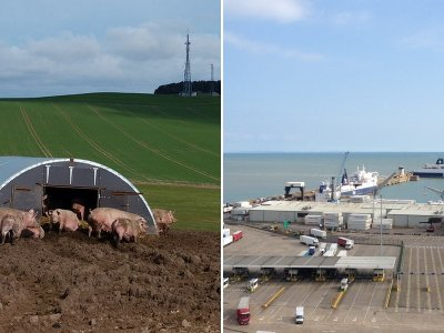 "Export/import imbalance ""serious threat"" to UK pork industry"