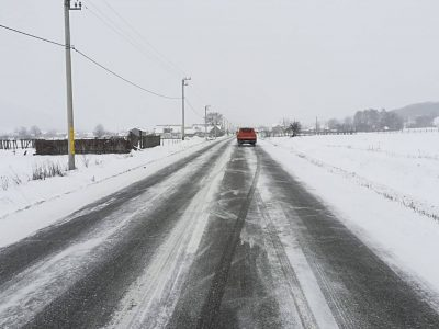 Atenție șoferi! Două coduri galbene de polei și ninsori viscolite