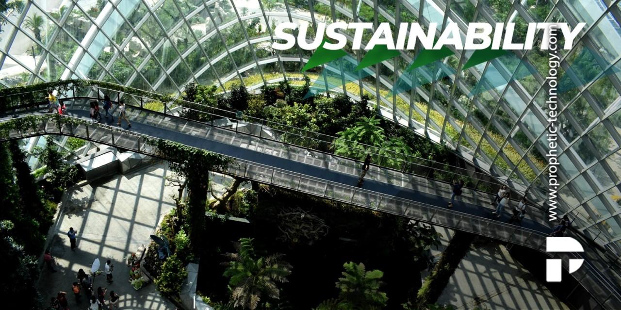 Circular Economy, the sustainability effort