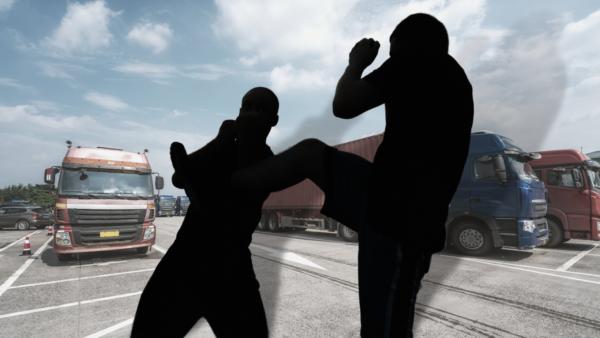 După ce a fost atacat de imigranți, un șofer a început să poarte o armă, fapt pentru care a fost con