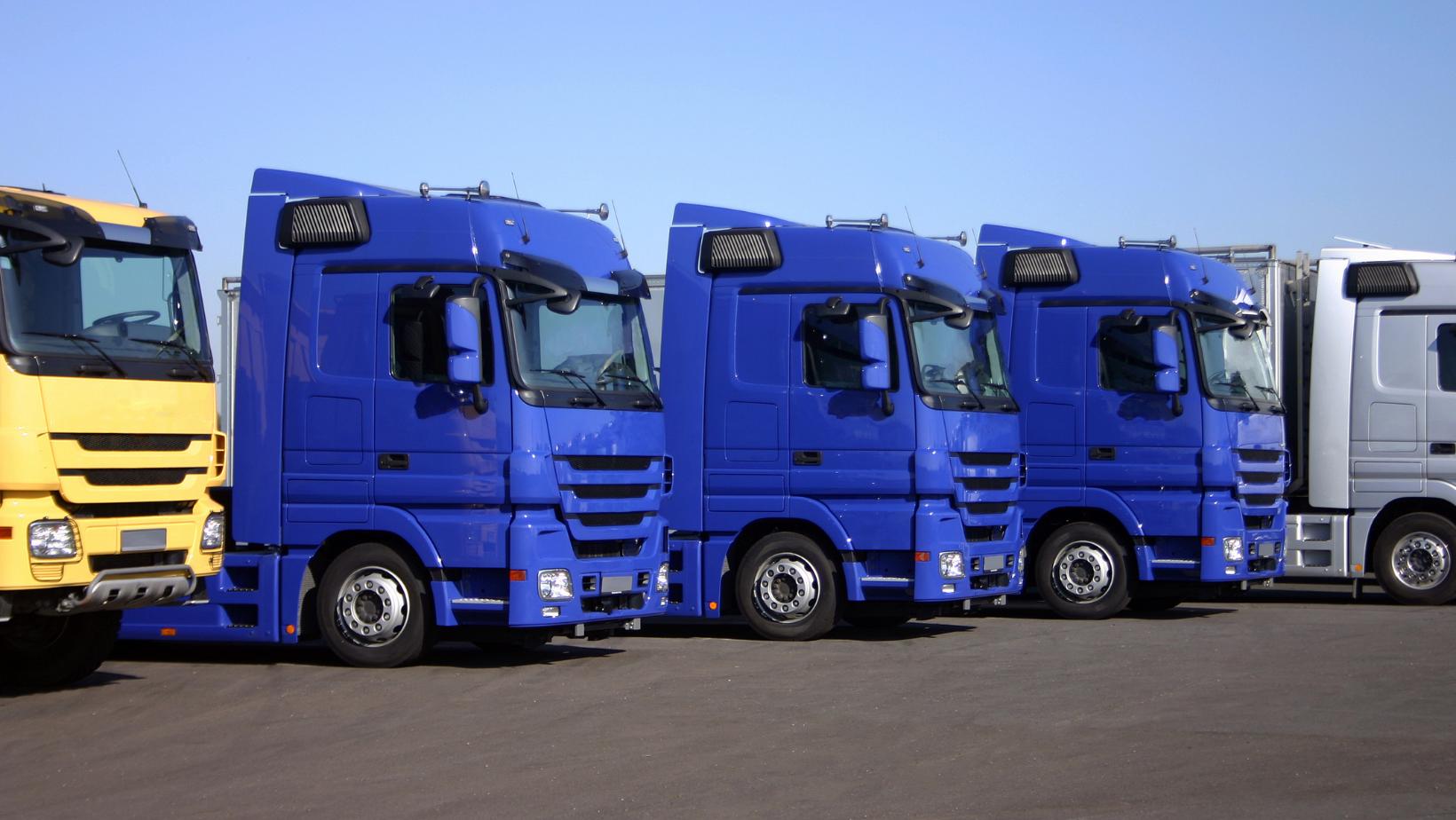 ANAF desființează o decizie de impunere de 5 milioane de euro în cazul unei firme de transport, în urma reconsiderării diurnei ca venit de natură salarială