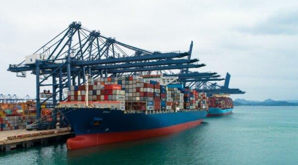 Перебои в логистике из-за карантина в китайском порту Яньтянь привели к проблемам глобальной торговл