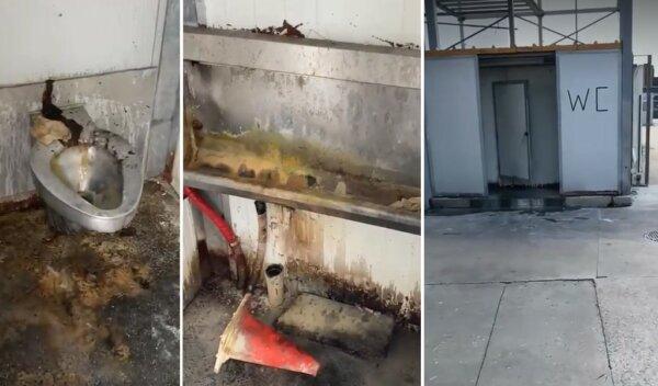 Kierowca nagrał obrzydliwą toaletę, a jego szef pyta, jak namówić kogokolwiek do pracy w tym fachu.
