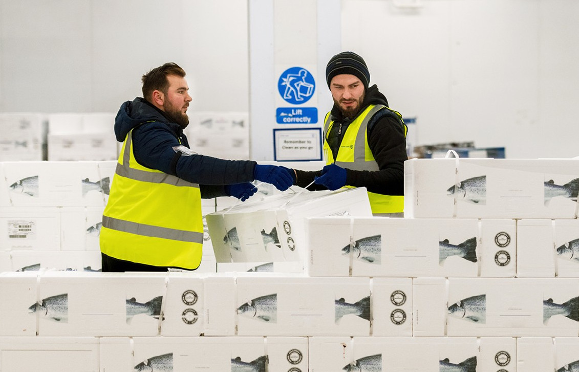 Kuehne+Nagel przejmuje norweską spedycję. Umocni pozycję w transporcie ryb i owoców morza