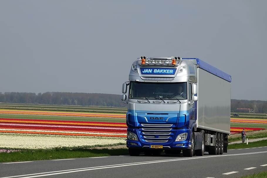 Dutch hauliers ready to save UK's supply crisis – if cabotage rules are relaxed
