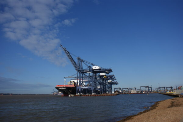 Spotlight on Felixstowe Port as driver shortage-related disruption continues